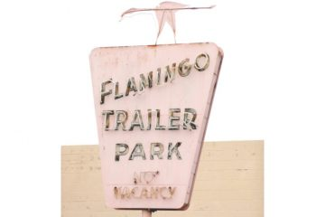 Think Pink - Flamants roses - Whatwedo Retro Signage