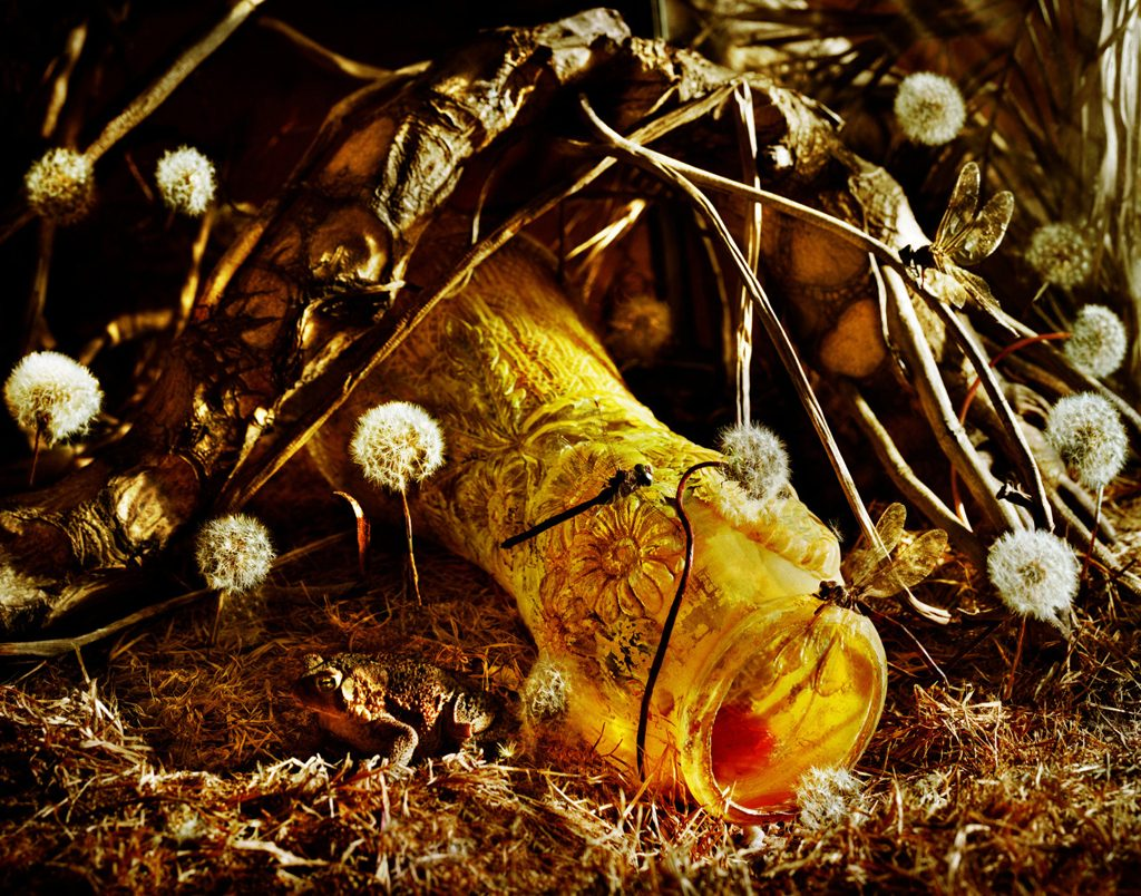 Photographies - GoldenBoys - Jeff Bark 6