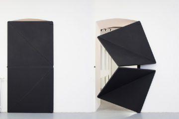 Evolution Door - Klemens Torggler