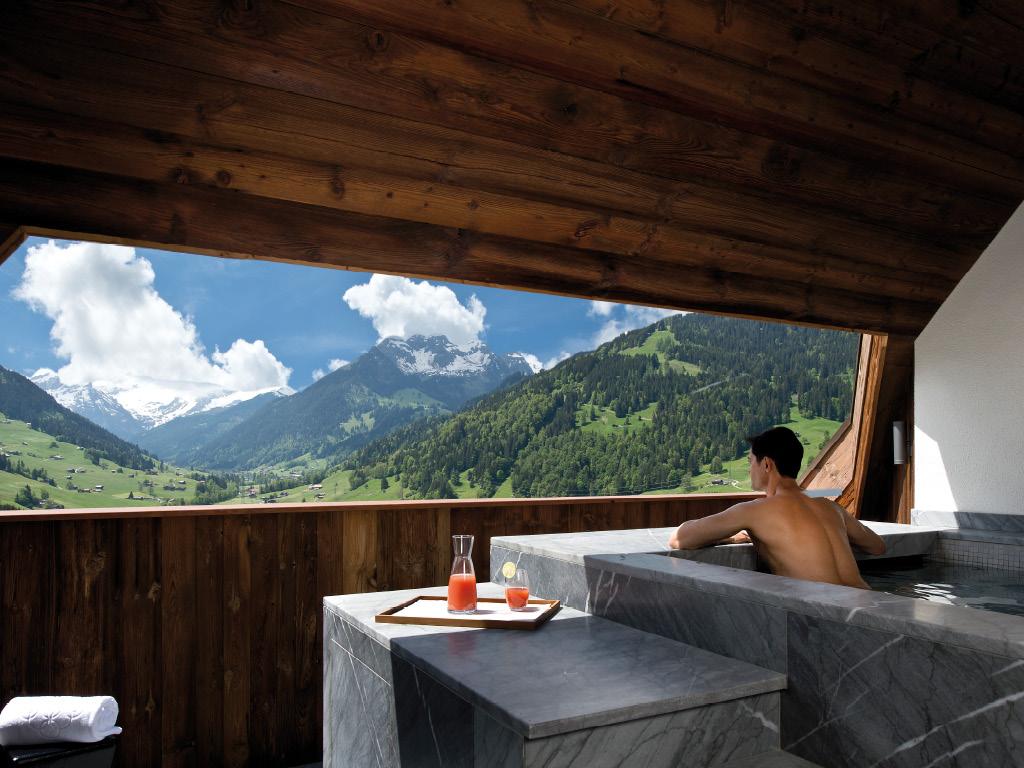 h tel alpina gstaad la nature au sommet du luxe brunch creative 2015. Black Bedroom Furniture Sets. Home Design Ideas