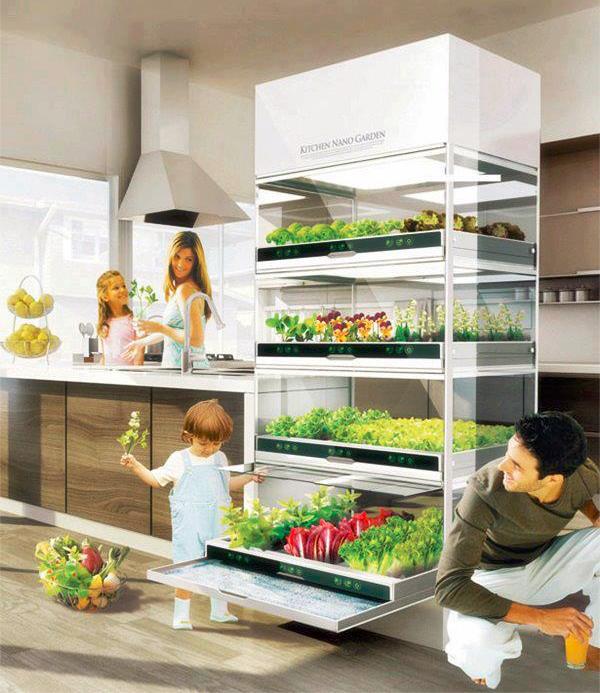 Potager d'appartement : le Kitchen Nano Garden de Hyundai