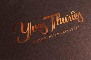 Visuel Logo Yves Thuriès